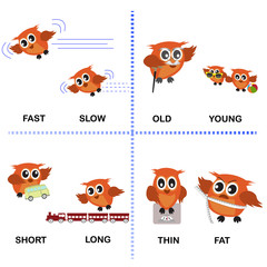 opposite word vector background for preschool (fast slow old young short long thin fat)