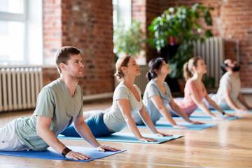 group of people doing yoga cobra pose at studio