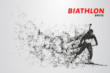 The biathlon is made up of particles. The biathlon consists of circles and points. Vector illustration.