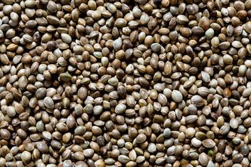 Background of hemp seeds.