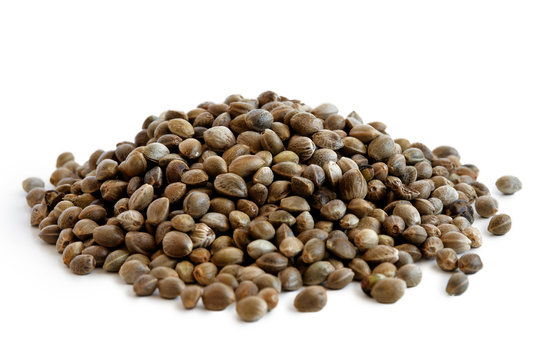 Heap of hemp seeds isolated on white.