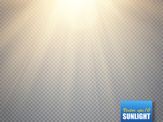 Sun isolated on transparent background. Vector illustration.