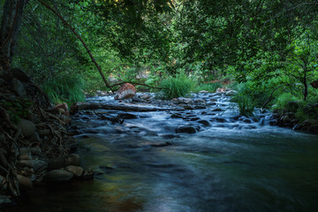 Shaded Oak Creek on a Summer Day in Sedona Arizona