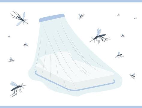 Mosquito net for bed. Zika virus prevention