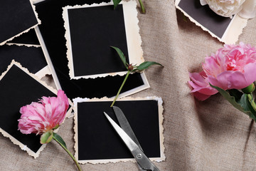Composition of beautiful peonies and photos on fabric background
