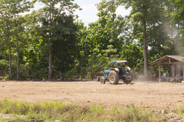 tractor in field, Mechanism farmer rice cultivation