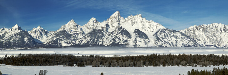 Winter in the Grand Teton NP