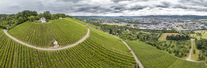 Luftaufnahme von Weinberg am Holzberg bei Schorndor, Remstal, Baden Württemberg, Deutschland