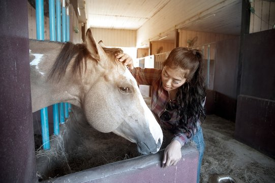 Pretty Asian woman petting horse in a farm.