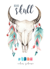 Watercolor bohemian cow skull and feather. Western mammals. Boho hipster deer boho decoration print antlers. flowers, feathers.