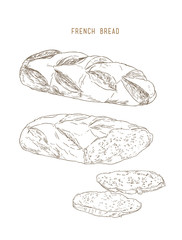french bread pastry , hand drawn sketch vector.