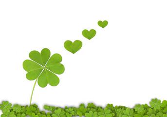 Tréboles de cuatro hojas sobre fondo blanco, buena suerte, aislado, corazones, verde, fondo, ilustración