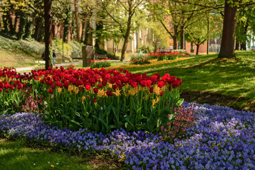 Stadtpark in Straubing
