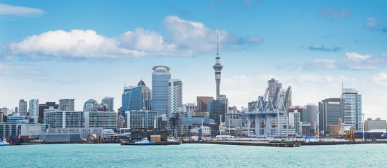 Aluminium Prints New Zealand Auckland view at the noon