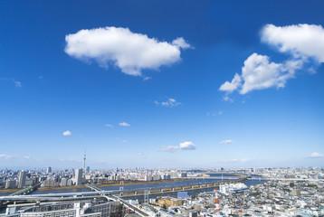 東京都市風景 快晴青空 東京スカイツリーと周辺の町並み