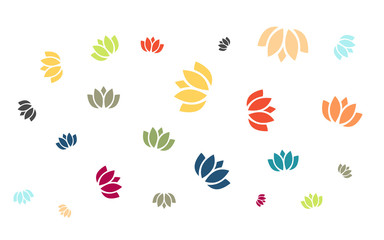 Viele bunte Blüten - Seerosen