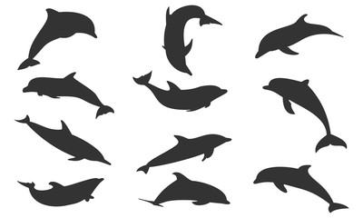 Silhouette dolphin set