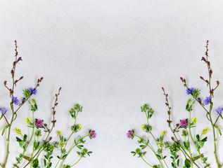 Fototapeta Background with wildflowers obraz