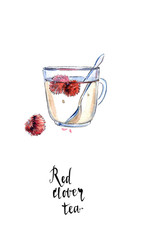 Red clover flower tea in the glass cup with spoon, in watercolor