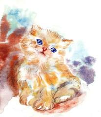 Little Cat Watercolor