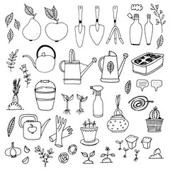 Gardening, horticulture vector set, equipment and tools, vegetables and plants isolated on white background