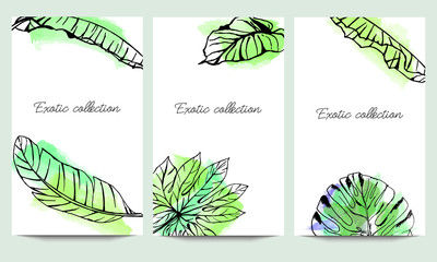Hand drawn vector exotic collection set template with tropical leaves isolated on watercolor background.