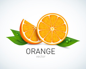 Orange slice with leaves isolated on white background. Vector illustration for decorative poster, emblem natural product, farmers market. Perfect for packaging design of cosmetics and food.
