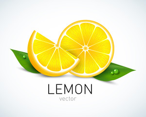 Lemon slice with leaves isolated on white background. Vector illustration for decorative poster, emblem natural product, farmers market. Perfect for packaging design of cosmetics and food.