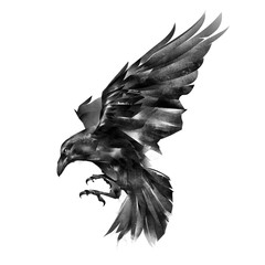 painted raven on a white background