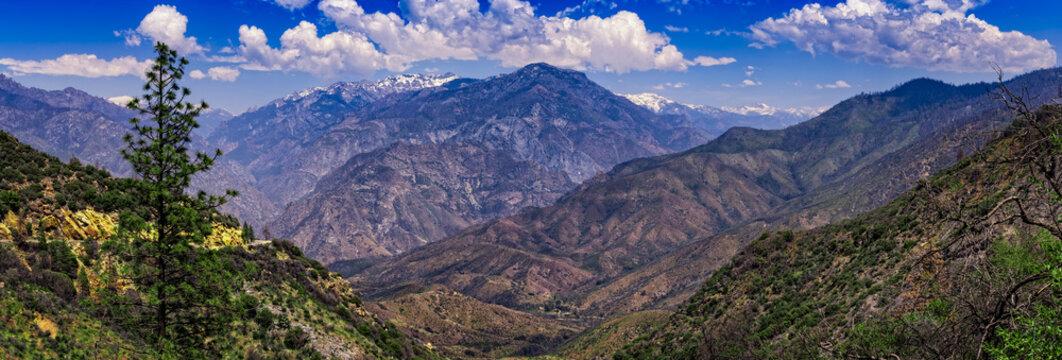 Sequoia National Park Panorama