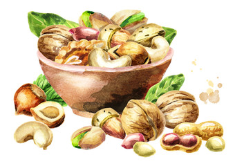 Bowl of nuts. Watercolor hand-drawn illustration