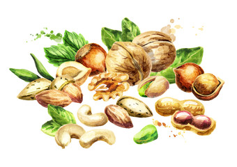Nuts mix. Watercolor hand-drawn illustration
