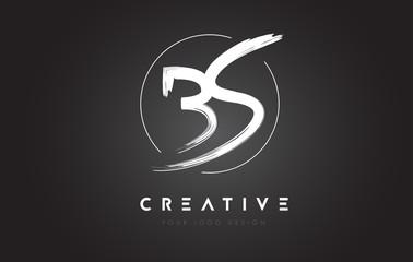 BS Brush Letter Logo Design. Artistic Handwritten Letters Logo Concept.
