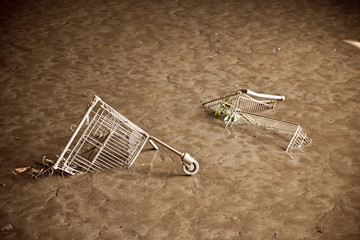 Shopping Carts In The Mud