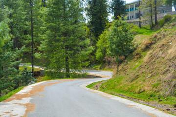 landscape/road