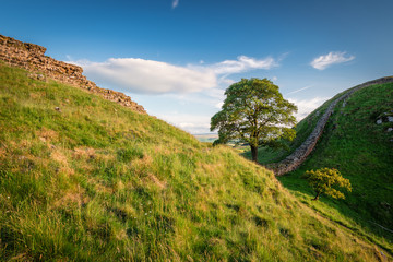 Hadrian's Wall at Sycamore Gap / Hadrian's Wall is a World Heritage Site in the beautiful Northumberland National Park. Popular with walkers along the Hadrian's Wall Path and Pennine Way