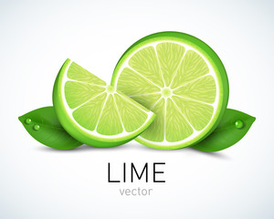 Fresh Lime slice with leaves isolated on white background. Vector illustration for decorative poster, emblem natural product, farmers market. Perfect for packaging design of cosmetics and food.