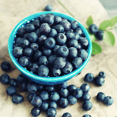 Berries of ripe juicy bilberry in a blue small bowl on a wooden table. Harvest of wild berries