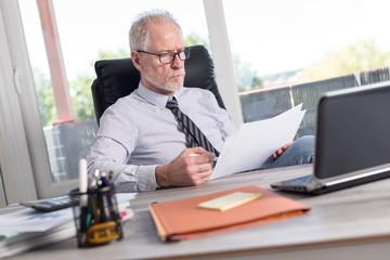 Portrait of mature businessman checking documents