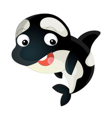 cartoon sea killer whale swimming looking and smiling - illustration for children