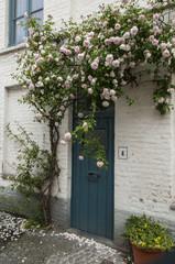 door wooden with rosebush