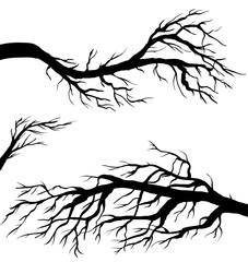 Black branch set