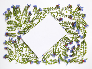 Floral frame made from the flowers Symphytum laid out pattern on a white background.