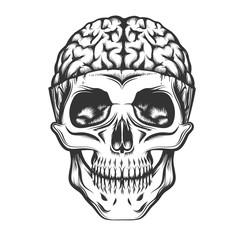 Skull with Open Brain