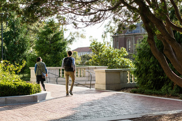 male and female students walking on campus in gold light with trees