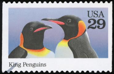 US Postage stamp - King penguins