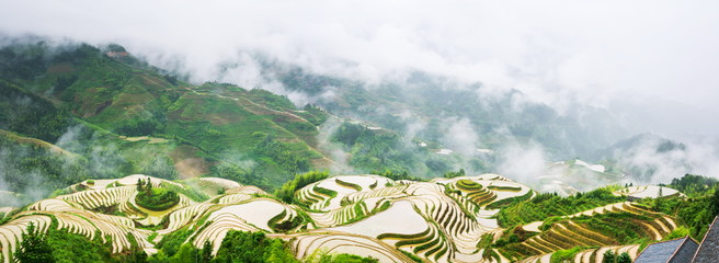 Foto auf AluDibond Reisfelder Panorama of terraced rice field in Longji, Guilin area, China