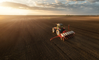 Farmer with tractor seeding