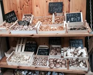 Mushrooms at the Outdoor Market