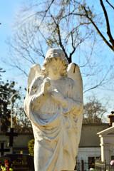 Pomnik anioła na cmentarzu